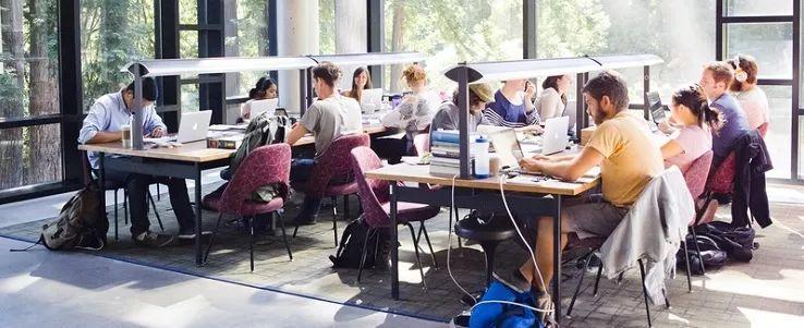 毕业想轻松在硅谷或旧金山找到实习机会?那快来这所学校!