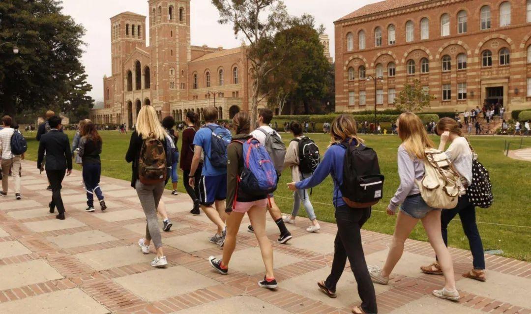 本科生容易被劝退?毕业不易?疫情下的中国留学生现状如何?